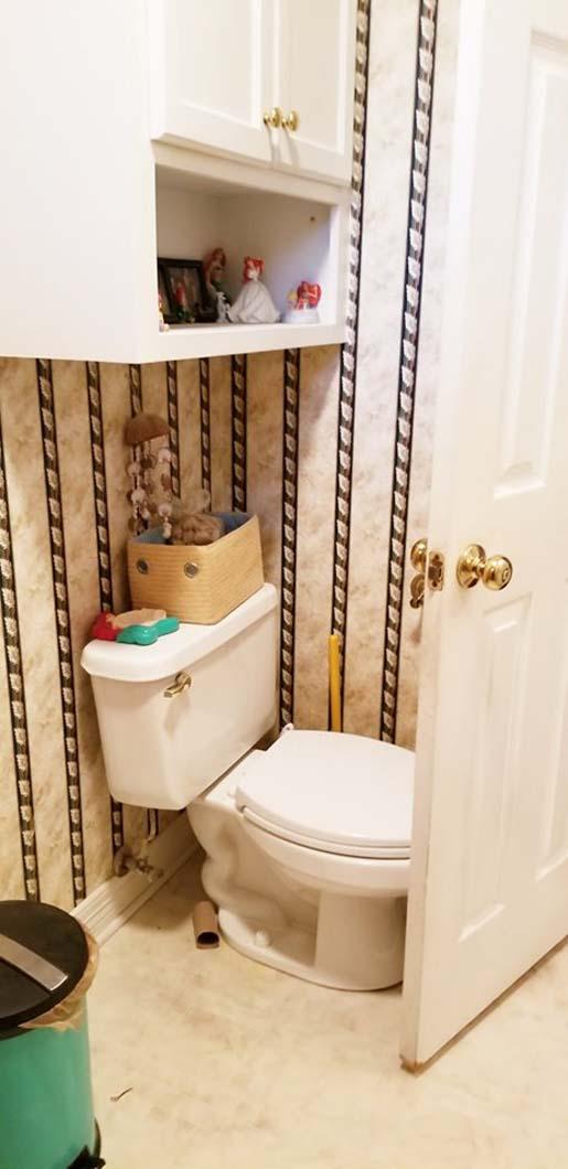 Surprise Bathroom - Toilet Before